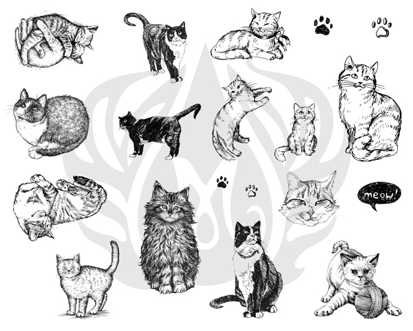 Mayco Silk Screens dss0120Cats
