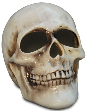 mayco bisque fpskull