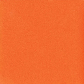 maycocolorsug204orange